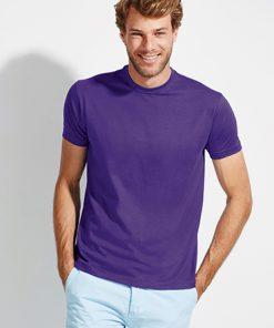Comprar Camiseta Regent hombre Barata